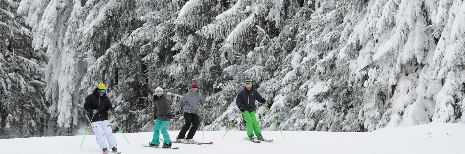 Skiers and snowboarders on snowy Tannenbaum slope