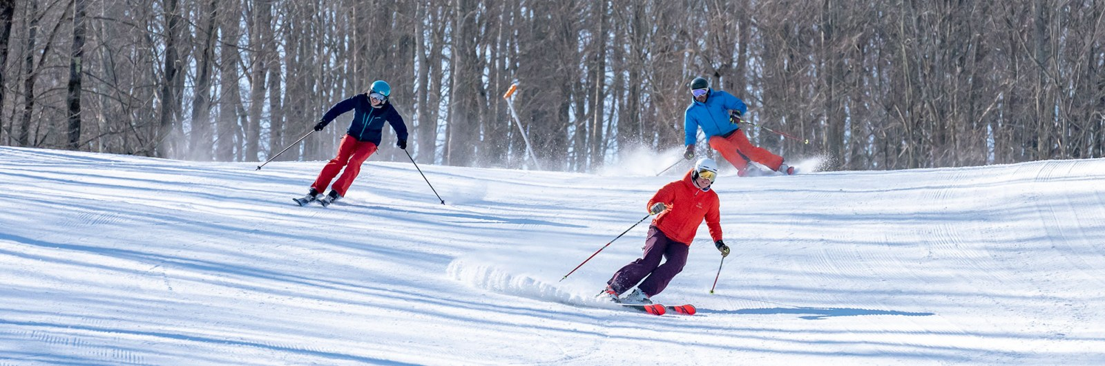 Skiers carving in the snow