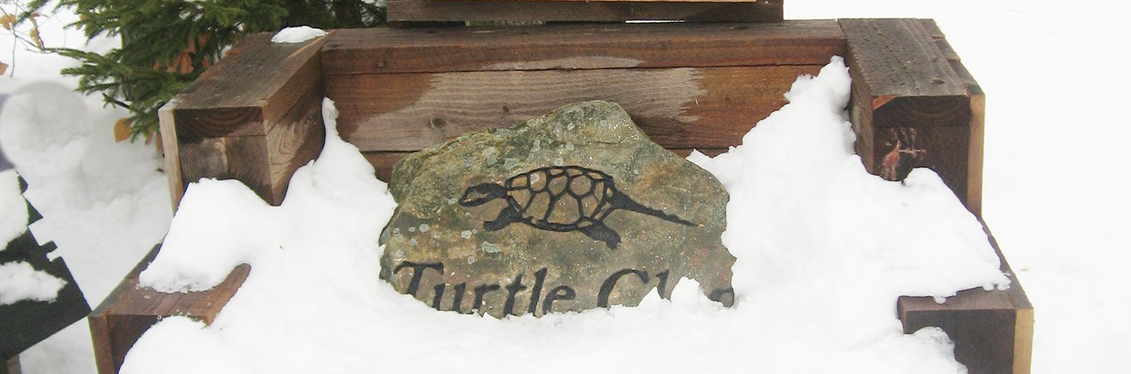 Turtle Clan Rock