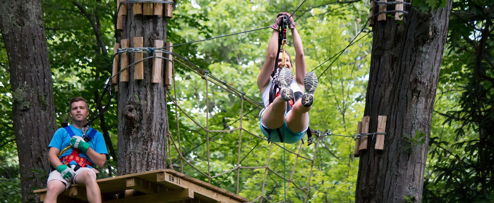 Dreaming of Fun in the Treetops?