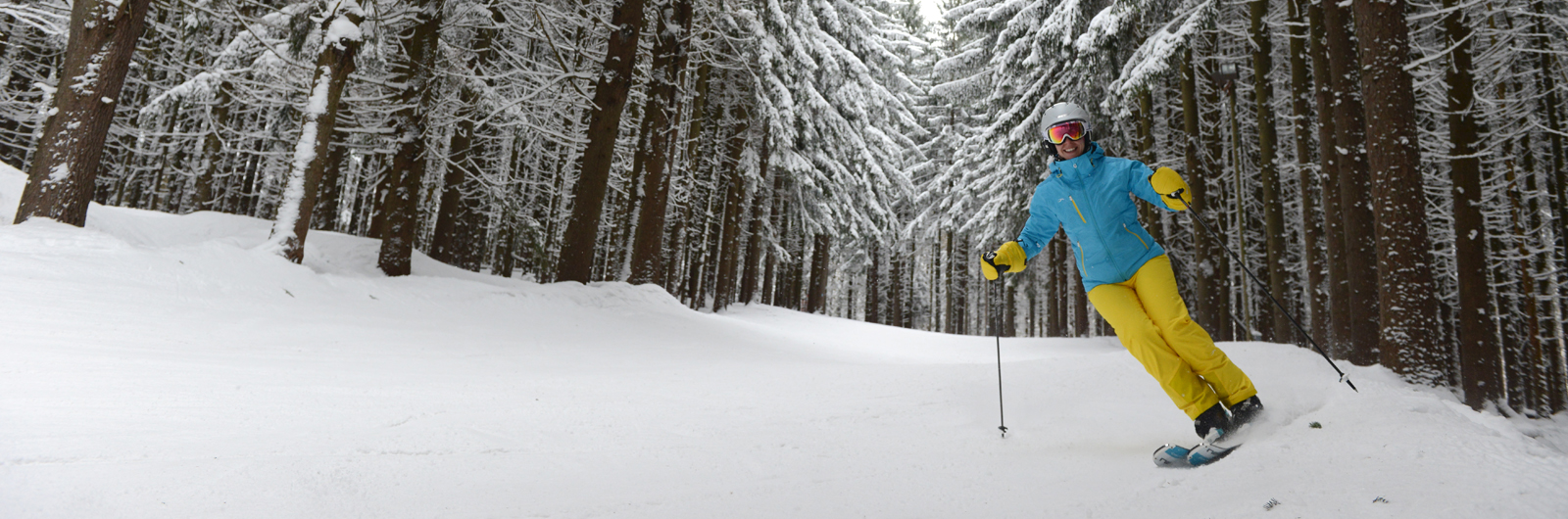 Woman skiing among snowy trees