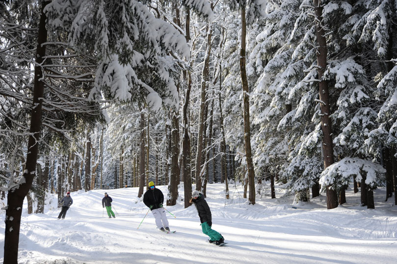 Skiers And Riders On Tannenbaum